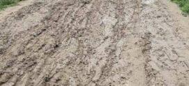 নাঙ্গলকোট ঝাটিয়াপাড়া থেকে পূর্ব বামপাড়া সড়ক সংস্কারের নেই কোন উদ্যোগ