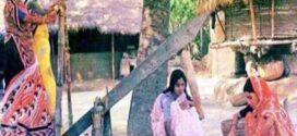 আধুনিকতার ছোঁয়ায় বিলুপ্তপ্রায় গ্রামীণ জনপদের ঐতিহ্যবাহী কাঠের তৈরি ঢেঁকি