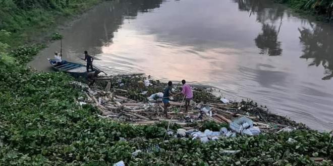 মধুখালীতে স্বেচ্ছাশ্রমে নদীর কচুরিপানা অপসারন