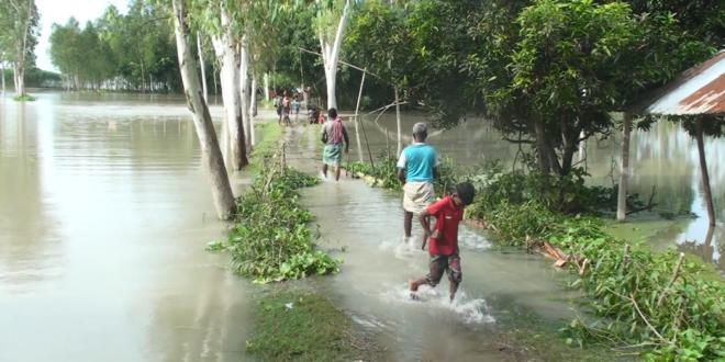 সিরাজগঞ্জের যমুনা নদীর পানি বাড়ছেই