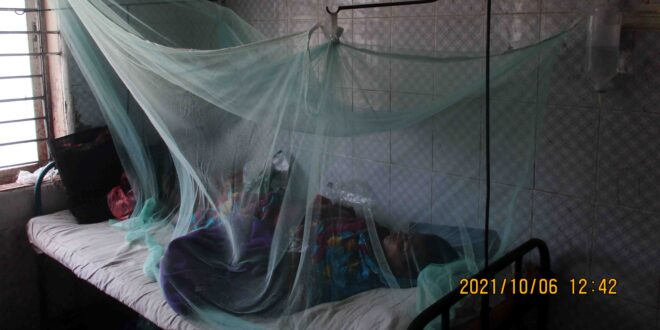 Barguna (ovi) DANGU news- PIC-07-10-21